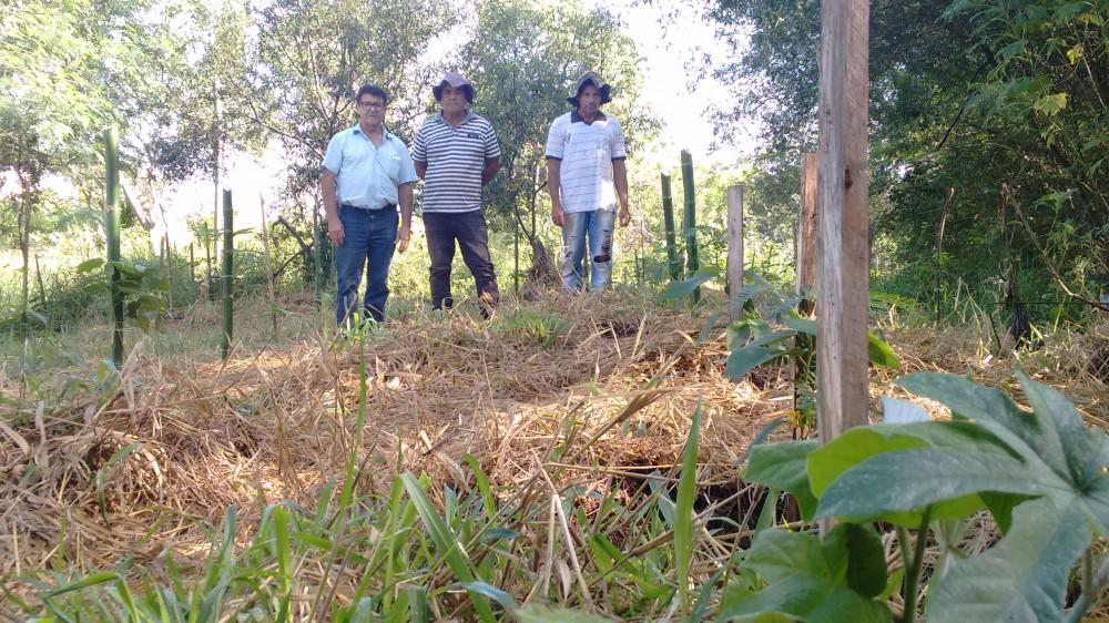 Secretaria de Agricultura e Meio Ambiente realizam o plantio de 72 mudas de espécies nativas na bica do antigo matadouro