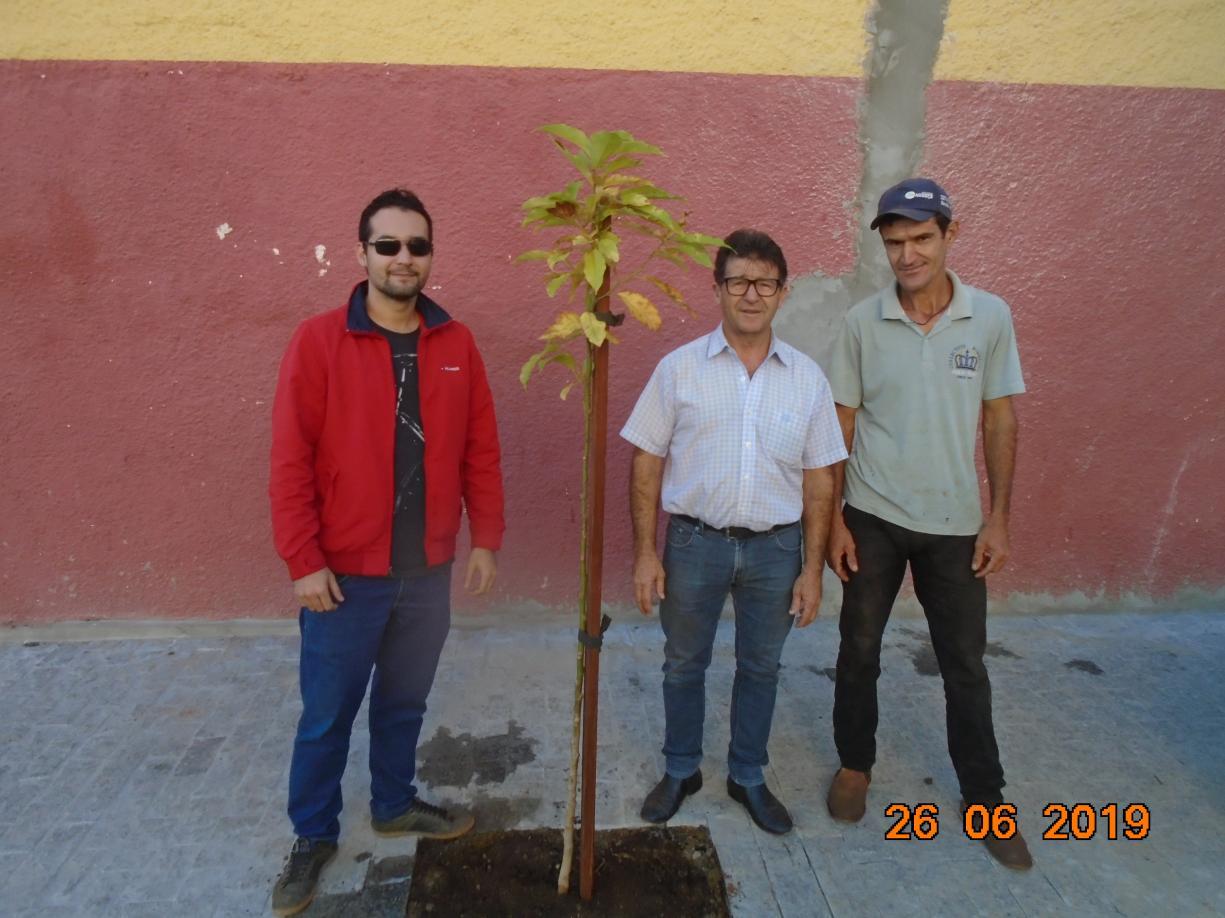 Agricultura realiza plantio de árvores nas laterais do Ginásio de Esportes TCC