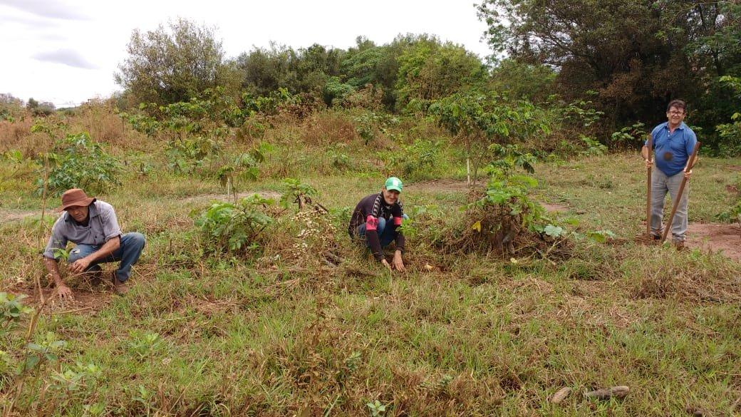 Agricultura e Meio Ambiente realizam plantio de mudas às margens do Córrego Bacuri